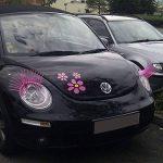 Cils roses pour voiture (paire de 2 cils) - Bande de colle longue durée (marque 3M), haute qualité de la marque Decooo.be - 3M image 1 produit