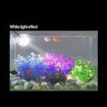 Umiwe Lumières d'aquarium de LED, projecteurs amphibies imperméables submersibles sous-marine Aquarium Spot Light 180-Degree Rotative Fish Tank décoratif lampe de la marque Umiwe image 1 produit
